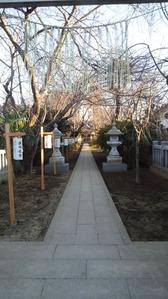 三咲神社甘酒配布 (1)