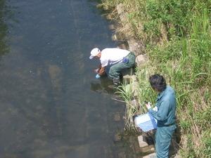 水質調査2014 (9)