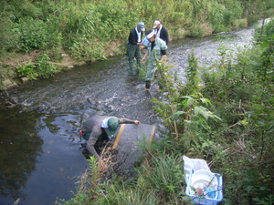 水質調査H25 (4)