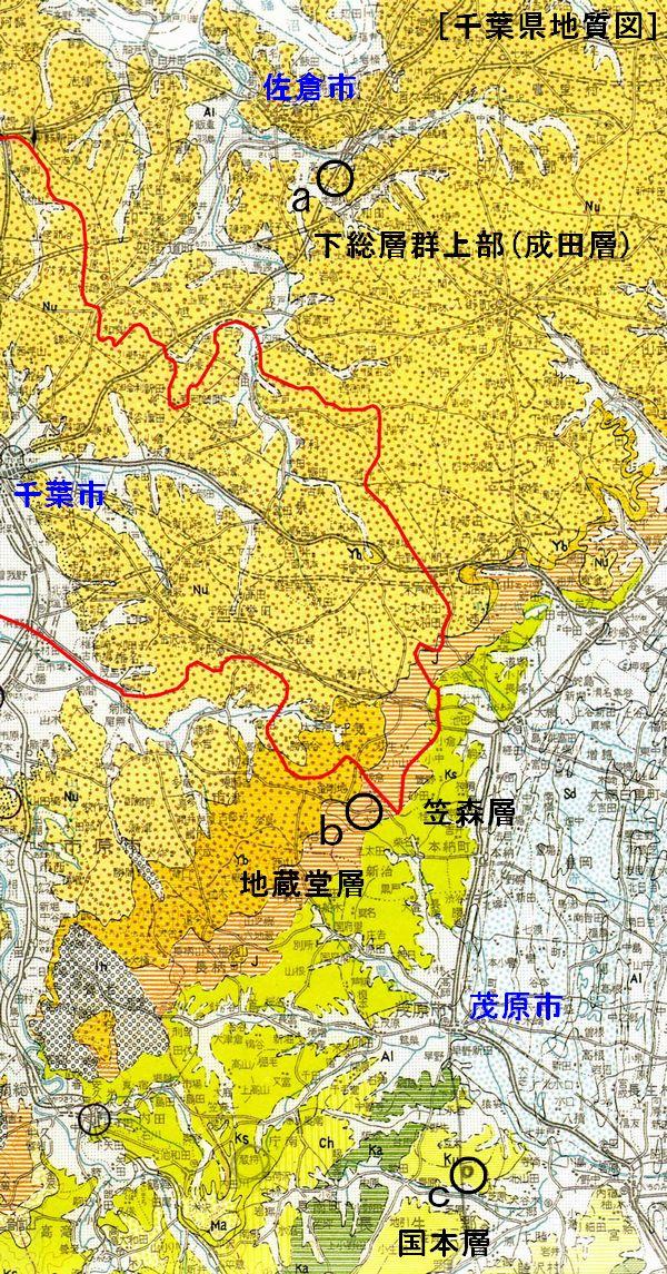 地質図�(エリア有り)