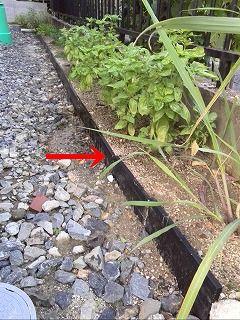 s-余った破風板をエッジに矢印