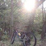 早朝ライド 男鹿市運動公園の桜と梅