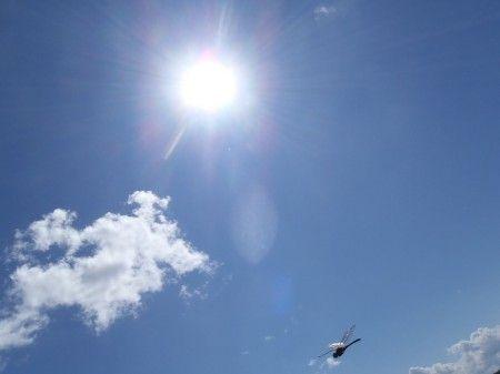 太陽と蜻蛉