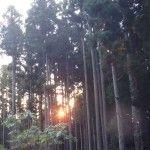2012-10-14 早朝ライド 寒風山もーにんぐクライム