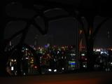 東京ドームホテル夜景