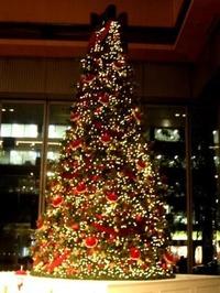クリスマス 037 web