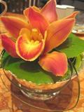ペニンシュラ 花
