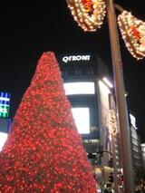 渋谷クリスマスツリー
