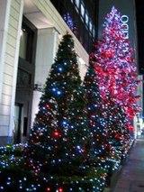 ロオジェクリスマスツリー