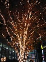 渋谷イルミネーション