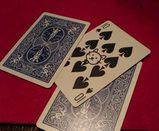 カードマジック中・選んだカード