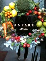 HATAKE AOYAMA