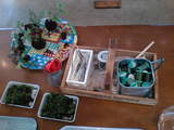 苔玉作り材料