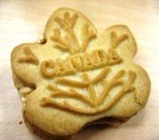 cookie 005 web