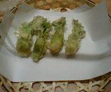 丸の内天ぷら菊亭(たらの芽の天ぷら)