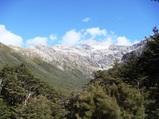 ニュージーランド 高原列車 Tranz Alpine(トランツアルパイン)景色