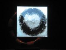ヨコハマトリエンナーレ2011 042 web