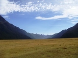 ニュージーランド フィヨルドランド国立公園1