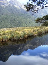 ニュージーランド フィヨルドランド国立公園 ミラー湖