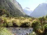 ニュージーランド フィヨルドランド国立公園2