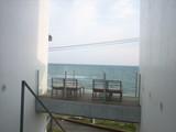 cher shore3