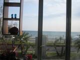 cher shore2