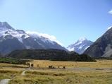 ニュージーランド マウントクック1
