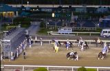 東京シティ競馬 レース前