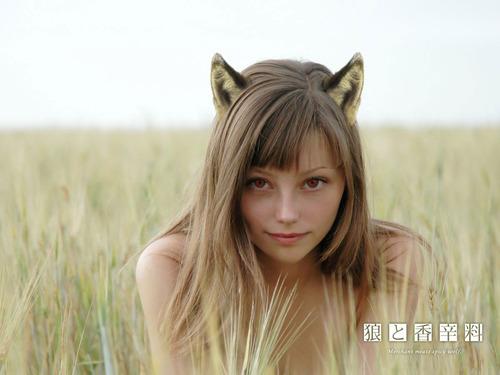 054-アナルアクセサリ