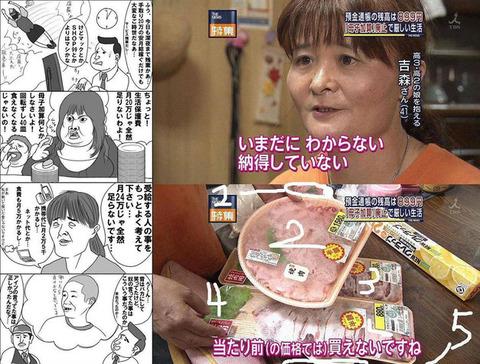 生活保護の母子加算廃止の有名画像-肉食わないで-もやし食え-もやし