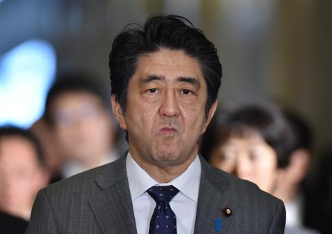 5c9c63f6-s 「アベやめろー!!!!」←こういうやつは誰が首相になれば文句ないの?