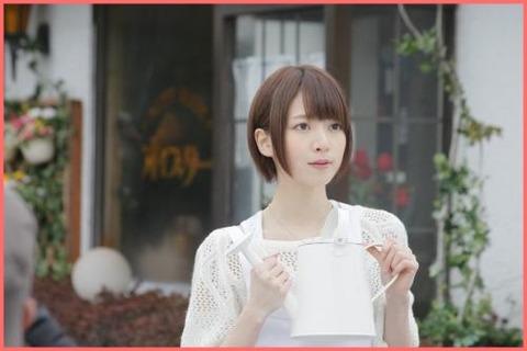 hashimotonanami3