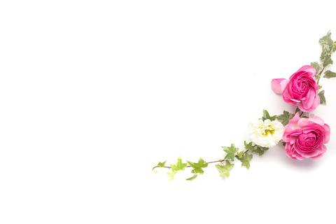 flower201261782_TP_V