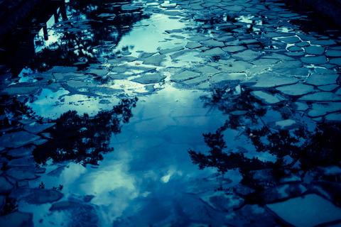 Reflection5215_TP_V