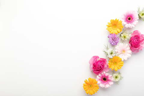 flower201261774_TP_V