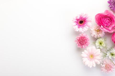 flower201261770_TP_V