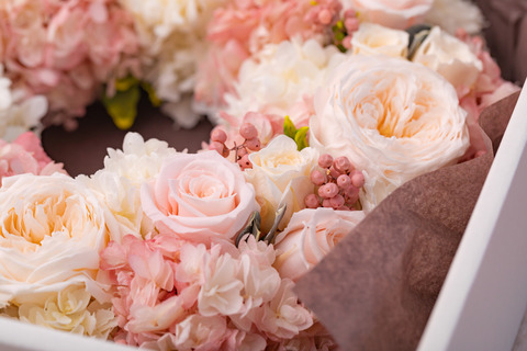 flower420145_TP_V