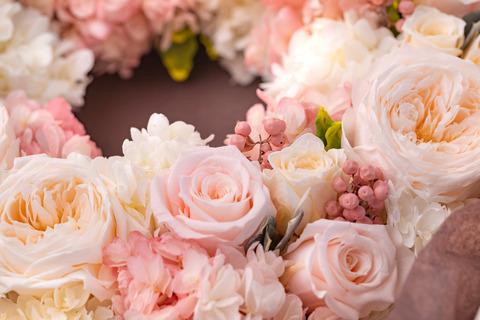 flower420146_TP_V
