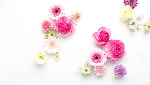 flower201261771_TP_V