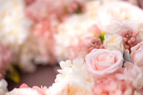 flower420148_TP_V