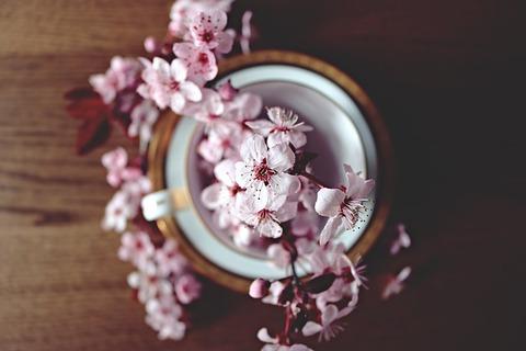 spring-2174750_640