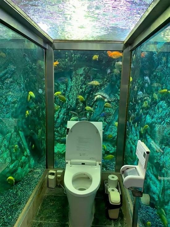 【画像】水族館トイレがこちらwww