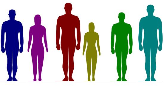 【悲報】日本人男性の身長分布をご覧くださいwwwww