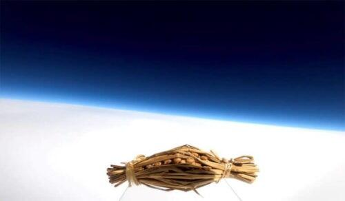 """【画像】水戸納豆が2020年""""宇宙の旅""""へwww"""
