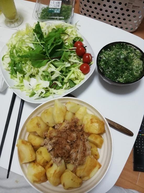 【画像】29歳独身一人暮らしの女の晩御飯がこちらwww