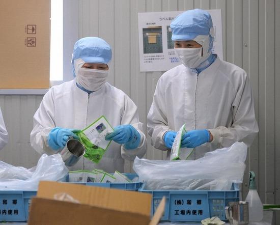 【画像】JAL社員、工場で袋詰め作業させられる。必死こいて勉強していい大学出た結果がこれなのか・・・