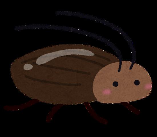 【GIF】ブラジル人のゴキブリ駆除の方法、ヤバすぎるwwwwww