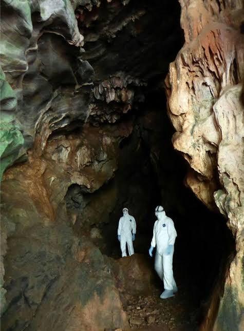 【画像】WHO、中国奥地の洞窟の中で新型コロナの調査を開始してしまうwww