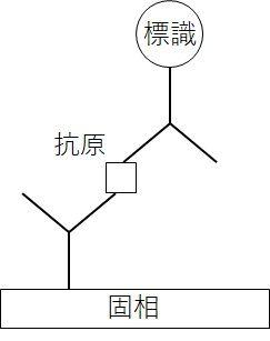 測定原理図3