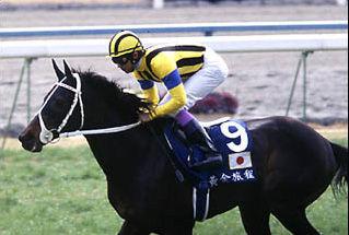 【競馬】ステイゴールドが勝った香港ヴァーズを見たんだけど
